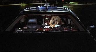 The 10 Best Dogs in Science Fiction | Tor.com