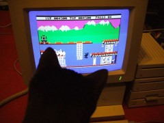 Meg enjoying the Apple IIgs