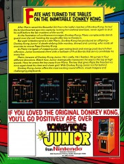 Donkey Kong Jr. Arcade Flyer Back