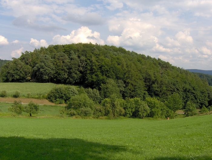 Snapshots from the Odenwald
