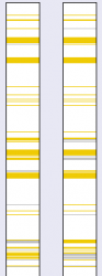 winmerge_compare_02.png