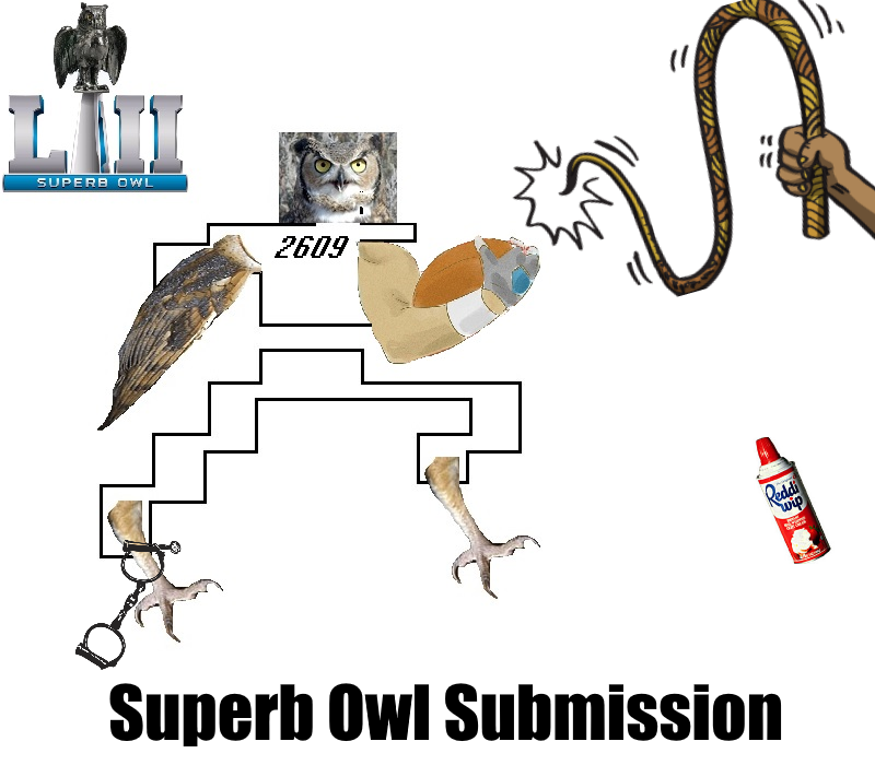 Retro Superb Owl Submission.png
