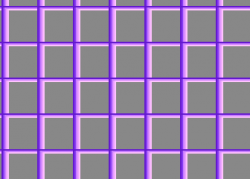 grids3.png