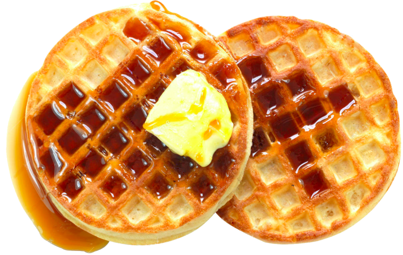 SECRET GOVERNMENT WAFFLE PICTURE.png