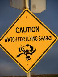 Caution for sharks.jpg