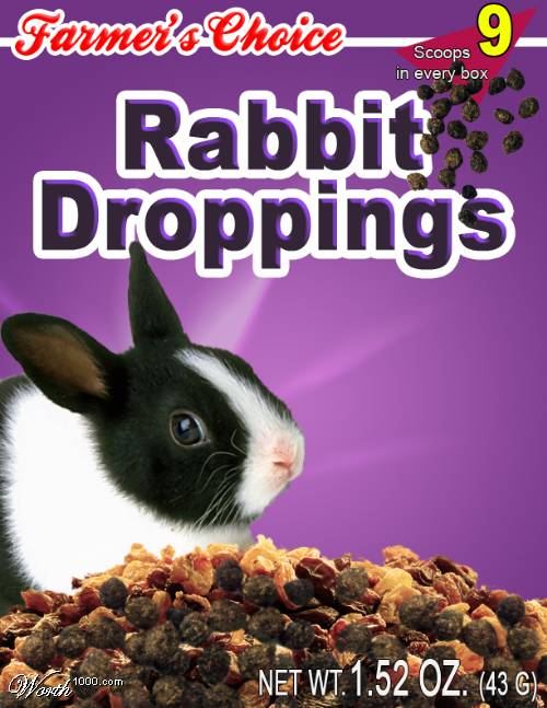 Rabbit Droppings.jpg