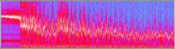 APX_Salmon_Run_try_2-spectrogram.png