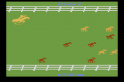 Stampede (1981) (Activision) 3BB 2557.png
