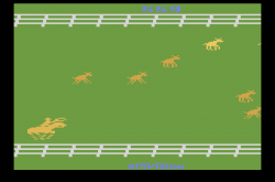 Stampede (1981) (Activision) 8AA 559.png