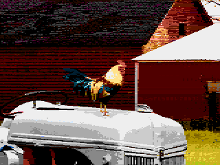RoosterOnTractorZ2.png