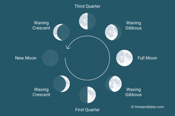 Moon Phases.png