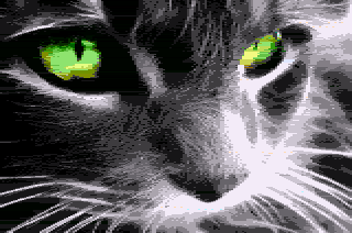 sheddy_wispy_catface.png.7ef5866120d270898dc088159277f0f0.png