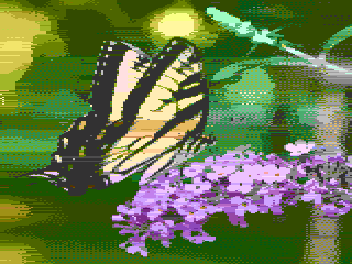 777ISMYNAME_BUTTERFLY2.png.10ff321adf5e29fdd8db9baacb068070.png