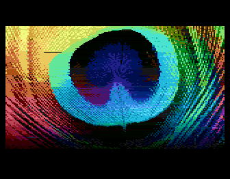 sheddy_peacock_feather_before.png