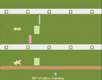 Steeple Chase - Screenshot